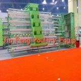 gaiola da galinha da camada 2-5tier (equipamento das aves domésticas)