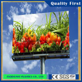 Бросание Acrylic Sheet для Advertizing Boards и Signboards
