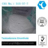 testosterona de gran alcance enanthate/315-37-7 de la hormona de esteroides del bodybuilding
