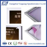 Hotsale: ライトボックスを広告するアルミニウム磁気LED