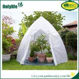 Serre chaude pliable instantanée de jardin de protecteur d'usine d'Onlylife