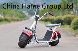 60V/30ah F/Rの中断2シートが付いている1500W電気自転車