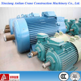 100% Câble en cuivre 22kw Wound Rotor AC Induction Electric Motor