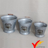 Set of 3 Water Balket Flower Arrange Vintage Galvanized Antique Buckets