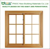 Puder Coated Sliding Windows mit Double Glass