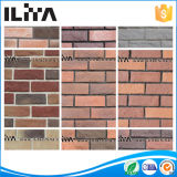 옥외 실내 벽 클래딩, Yld-01010를 위한 인공적인 클래딩 문화 돌