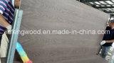 ISO9001 증명서 베니어에 의하여 박판으로 만들어지는 널 (1220*2440)