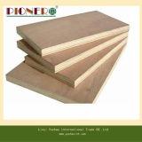 Buena madera contrachapada de la melamina del grado de los muebles del precio y de la calidad