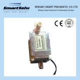 Mini elettrovalvola a solenoide di alta qualità astuta Wvr230c-12A
