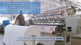 Il blocco per grafici industriale CS94 ha spostato la macchina imbottente automatizzata Multi-Ago