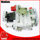 Commins Engine Fuel Pump para Nt855, Kta19, Kta38 e Kta50