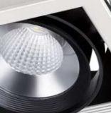 3 Jahre Köpfe 30W der Garantie-3 PFEILER LED Gitter-Licht-