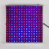 Nieuwe Vierkante 14W leiden kweken Licht Volledig Spectrum 225 het Blauwe LEIDENE Licht van de Lamp voor de Sla van Groenten
