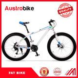 Скорость Bike 30 углерода высокия уровня Fatbike 26 углерода тучная