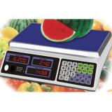 Электронные весы Вычислительный Цена шкала (DH-583)