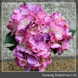 Sunwing 고품질 다채로운 Hydrangea 인공 실크 꽃