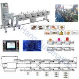 Kundenspezifische Gewicht-sortierende Maschine für essbare Meerestiere mit den 10 Gewicht-Stufen