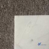 カラーラの磨かれた自然で白い大理石のタイル