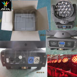 19X12W Feixe 4-em-1 LED Moving Head Light Stage