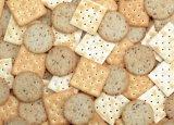 Gsa e tipo ecléctico linha do aquecimento de produção do biscoito