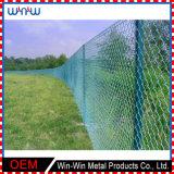 Panneaux bon marché de frontière de sécurité de jardin d'intimité de piquet de fer travaillé de treillis métallique