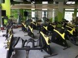 Bicicleta comercial do balanço do equipamento da ginástica do equipamento da aptidão