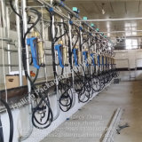 교류 우유 미터 암소를 위한 헤링본 젖을 짜는 객실 시스템