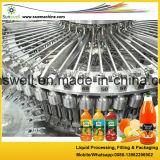 Cadena de producción del fabricante del jugo de zanahoria