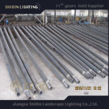 Poste de lampe galvanisé par acier extérieur de fléau d'éclairage
