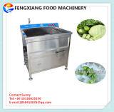 Lavadora De Frutas E Legumes Wasc-10, Lavadora De Desinfecção De Ozônio Comercial