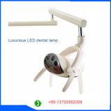 Computertechnologie-zahnmedizinischer Stuhl mit deluxer LED-induktiver Lampe