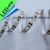 SMD 2835 120leds / M LED tira flexible