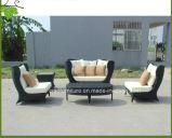 Sofà esterno del giardino del poliestere di alluminio Polished moderno della mobilia (CF834)