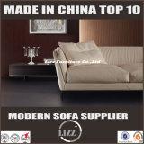 簡単な様式のホーム家具のソファーはセットした(LZ-719)