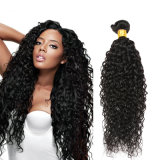 Nice Quality Human Hair Extensions/Kinky Curly Bundles Virgin Indian Hair
