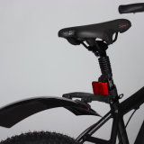 Bester Preis-elektrisches Fahrrad mit fettem Gummireifen für Verkauf