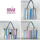 Handbags Hot Style Women方法PUの女性ハンド・バッグ(LY060284)