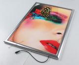 Haute qualité LGP Acrylique LED Illuminé Vente en gros Slim Light Box