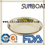 Plaque de nourriture de vaisselle d'émail
