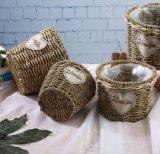 (BC-SF1003) Popular paja natural hecho a mano cesta de la flor