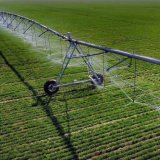 Schlauch-Gegenkraft-seitliches Bewegungs-Bewässerungssystem für Verkauf