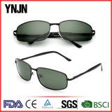 Lunettes de soleil carrées promotionnelles de Mens de Ynjn polarisées avec la FDA de la CE (YJ-F8285)