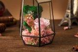 형식 생일 선물을%s 유리에 있는 자연적인 실제적인 로즈 꽃
