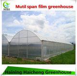 Multi-Überspannung EM-Plastikfilm-Gewächshaus für die Werbung verwendet