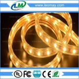 고전압 수중 SMD2835 Dimmable LED 지구 테이프