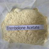 Acetato di Trenbolone per la vendita calda 99.5% GMP del fornitore steroide di Bodybuilding