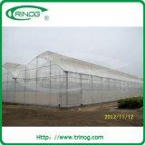 5-laag polyfilm groen huis voor groot landbouwbedrijf