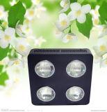 Höchste leistungsfähige Wasserkultur-LED wachsen für purpurroten Basilikum hell
