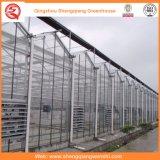 農業またはコマーシャルのためのガラスか空の緩和されたガラスのアルミニウム温室