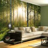 Impressão bonita das pinturas murais do papel de parede da cor cheia da alta qualidade